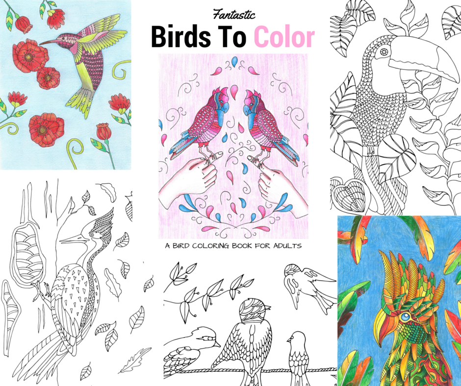 fantastic birds to color a bird coloring book for adults - Bird Coloring Book
